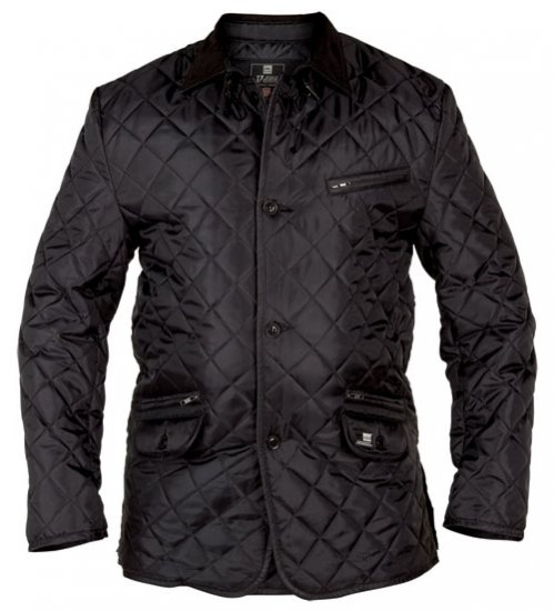 D555 Jay Quilted Jacket - Jackets & Rainwear - Jackets - 2XL-8XL