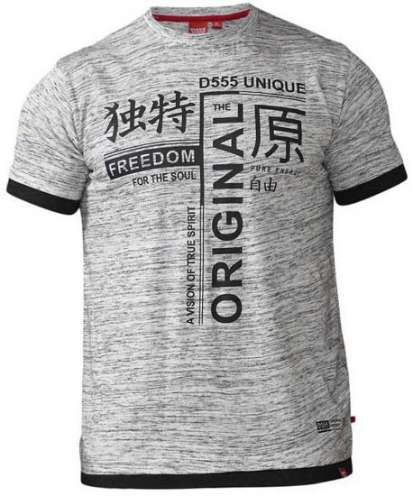 D555 Harold T-shirt Grey - T-shirts - T-shirts in big sizes - 2XL-8XL